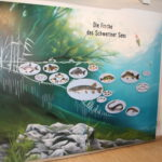 Vom Fischer un sin Fang rund um den Schweriner See - Dauerausstellung